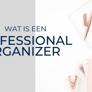 professional organizer